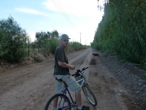 Bicycling Mendoza wine country